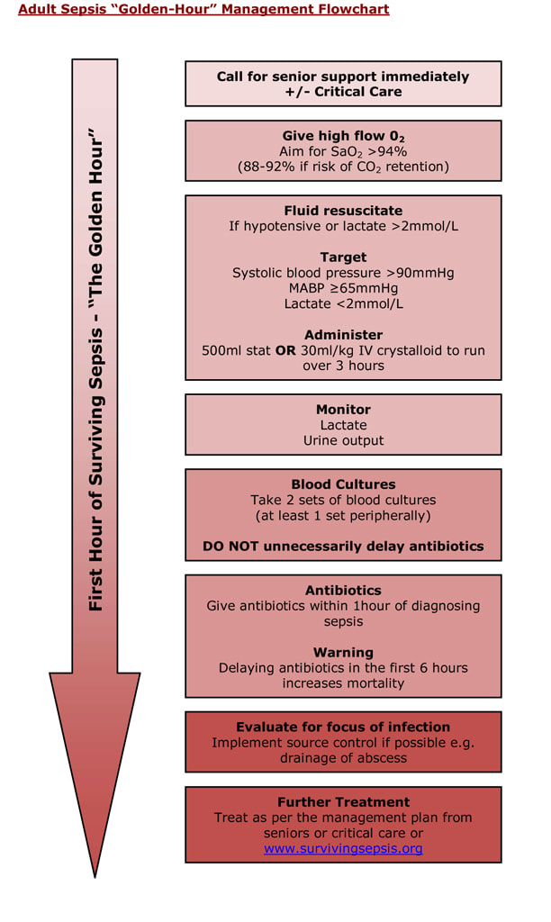 Sepsis Golden Hour Flowchart Covid-19